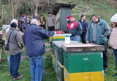 Obavijest: Praktični radovi na PDZ pčelinjaku