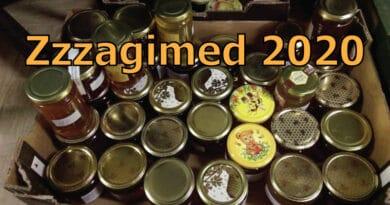 Obavijest: Zzzagimed 2020 – Javni poziv