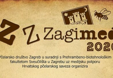 Zzzagimed 2020 – Rezultati